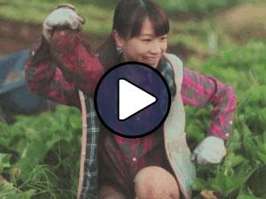 Ishida Ayumi a Harvest Forest Time című klipjében